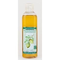 Obnovující šampon 200ml NT