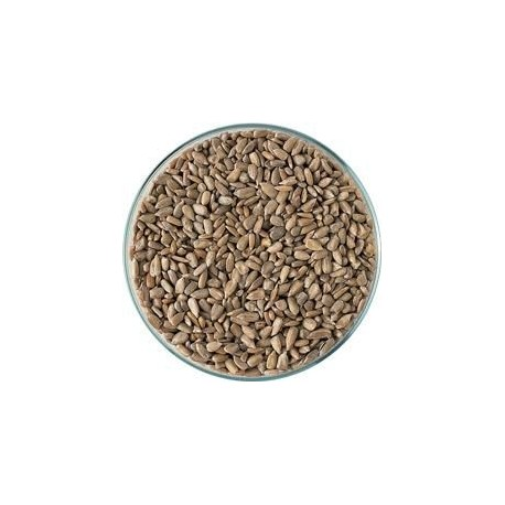 Slunečnicové semeno loup.-volně 1kg